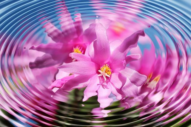 flower-110783 640